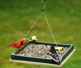 hanging tray feeder
